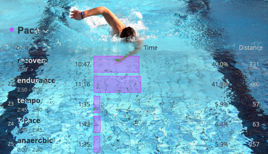 How To Use Swim Zones Determine Your Current T Pace And Swimming