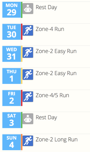 A screenshot of the training calendar in SportTracks endurance sports software