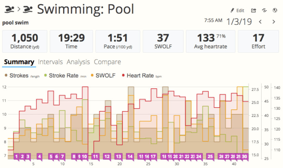 A screenshot of a swimming workout in SportTracks endurance sports software showing SWOLF, heart rate, stroke rate, and strokes