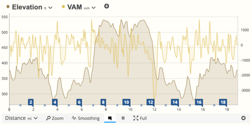 VAM data compared with elevation in SportTracks endurance sports training software