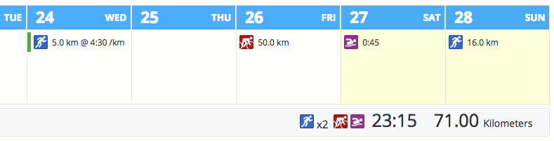 The monthly calendar view in SportTracks endurance sports training software showing planned running, swimming, and cycling workouts