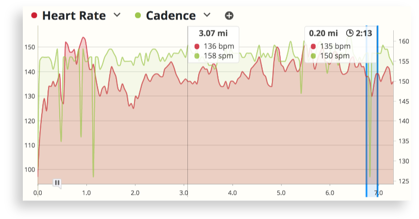 The Workout Detail chart in SportTracks endurance training software showing heart rate data compared to running cadence in a long run