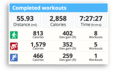 The completed workouts summary from SportTracks endurance sports training software